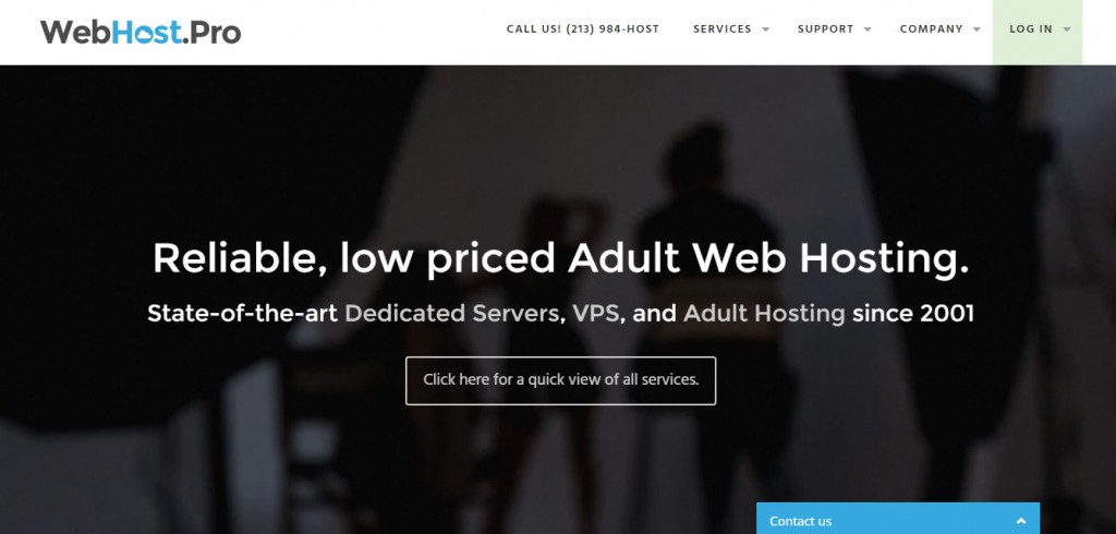 best adult hosting webhost